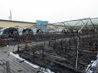 В Хабаровском крае сгорел стихийный палаточный лагерь: один ребенок погиб, трое в коме (ВИДЕО)