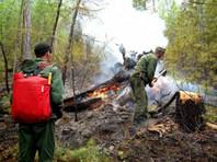 Комиссий по предупреждению и ликвидации чрезвычайных ситуаций и обеспечению пожарной безопасности. Значительная часть всех возгораний приходится на Красноярский край, Якутию и Иркутскую область