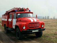 В России тушат лесные пожары в 11 регионах на площади 133,2 тыс. га