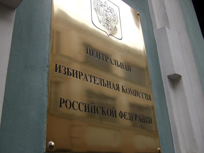 Избирательную кампанию в Москве можно отменить только в судебном порядке, заявили в ЦИК