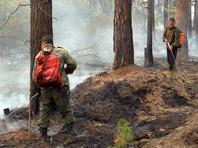 Сибирские пожары пока нанесли экономике России ущерб в 2,4 миллиарда рублей