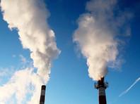 Массовое строительство мусоросжигающих заводов обернется для России экологическим геноцидом населения, предупредили ученые