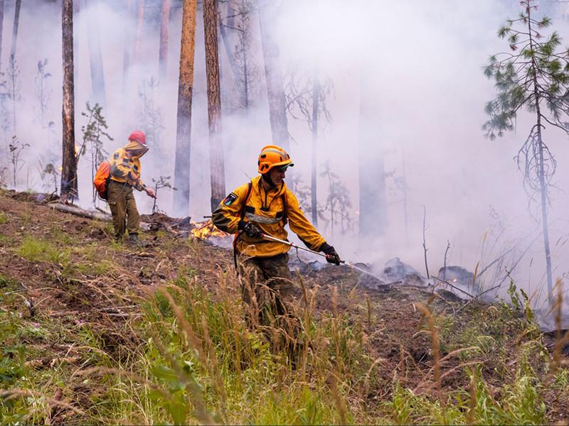 Лесные пожары бушуют в Сибири уже третий месяц. Они стали катастрофой не только российского, но и глобального масштаба. Пожар прошел 12 миллионов гектаров и, видимо, станет самым крупным в истории России