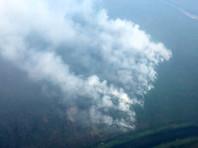 Генпрокуратура связала рост лесных пожаров с волокитой и махинациями со статистикой