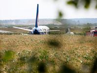 Подмосковные власти отрицают, что попавшие в двигатель самолета птицы прилетели в Жуковский с соседних свалок
