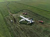 А в министерстве экологии Московской области заявили, что ближайшая к аэропорту свалка закрыта и находится слишком далеко, чтобы стать причиной скопления птиц в районе воздушной гавани