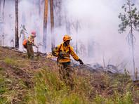 Огненный апокалипсис: в Сибири в огне уже до 4,5 млн гектар леса, а тушат только 6% пожаров