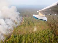 """Правительство привычно ищет врагов, чтобы обвинить в катастрофических пожарах в Сибири: объявлен поиск поджигателей и """"стрелочников"""""""