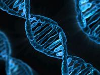 """Заказчиков интересует использование технологии редактирования генома для """"создания общества нового типа"""""""