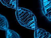 В апреле нынешнего года сообщалось, что Мария Воронцова указом президента включена в состав совета по реализации федеральной программы развития генетических технологий