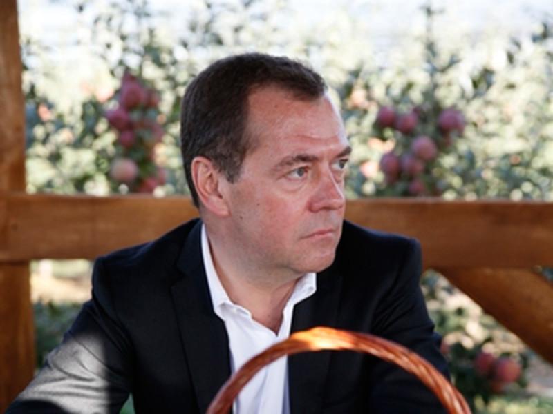 """""""Винодел"""" Дмитрий Медведев увлекся производством самогона, утверждают источники """"Проекта"""""""