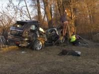 По предварительным данным, мэр не справился с управлением, машина съехала в кювет и наехала на дерево. Булакин скончался на месте