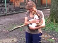 """В середине октября стало известно, что животное еще зимой сбежало из зооуголка, где находилось на """"ответственном хранении"""""""