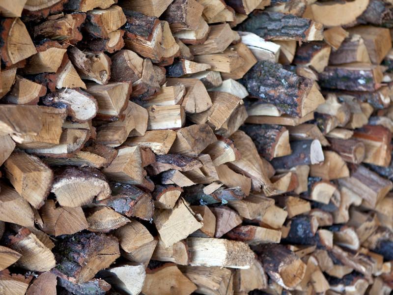Военный суд в Мурманской области вынес приговор офицерам за многомиллионное мошенничество при поставке дров