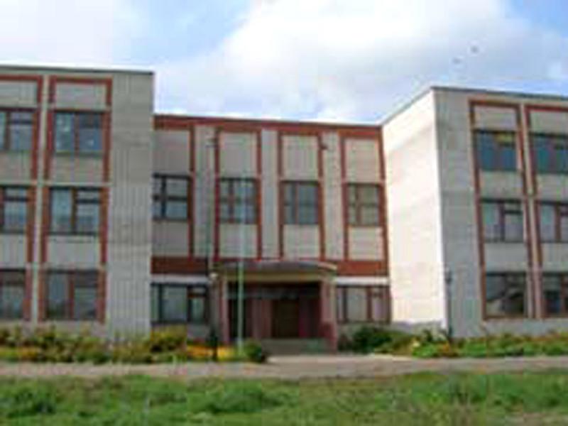 Вадская средняя школа Нижегородской области