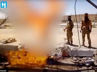 """""""Новая газета"""" утверждает, что расправу учинили бойцы ЧВК Вагнера, в 2017 году принимавшие участие в боевых действиях в Сирии"""