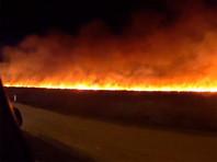 В 21:00 сотрудникам МЧС удалось локализовать пожар на площади 1500 м². Расстояние между городом и кромкой пожара не превышает 500 м
