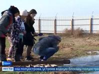 Открытие артезианских скважин в Крыму стало пропагандистским позором: жители пьют из лужи и черпают воду ведрами (ВИДЕО)