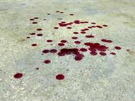 Студент МГУ обвинил сотрудников ФСБ: они два часа били и резали ему руки в библиотеке вуза, добиваясь признания в терроризме