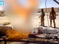 """Фонтанка"" опознала еще трех участников ""казни дезертира"" в Сирии в 2017 году."