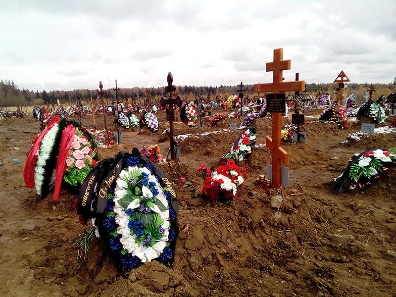 За январь-октябрь 2019 года естественная убыль населения России, то есть превышение числа умерших над числом родившихся, составила 259,6 тыс. человек, следует из данных Росстата