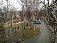 Аномальное тепло на европейской территории России: побиты рекорды, проснулись медведи, цветут подснежники (ФОТО, ВИДЕО)