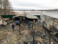 Восемь человек погибли при пожаре в Подмосковье