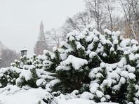 В Москве ожидается самый сильный за зиму снегопад