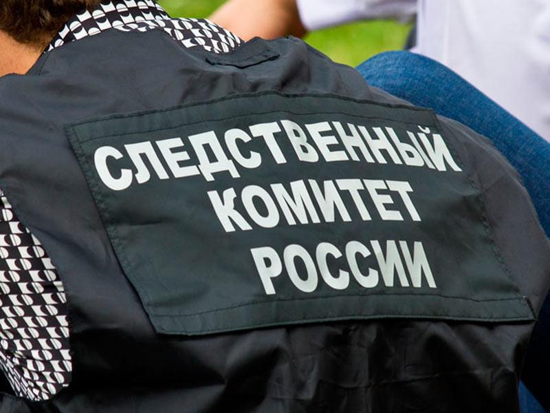 Следователи завершили расследование дела об убийстве активистки Елены Григорьевой, тело которой нашли с множественными ножевыми ранениями в Московском районе Петербурга летом прошлого года