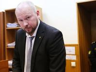 """Почуев заявил, что Соколову было предъявлено обвинение по ч. 1 ст. 222 УК РФ (""""Незаконное хранение оружия""""). """"Мой подзащитный не спорит с этим. Он сам добровольно выдал [следствию] обрез, который, отмечу, не был приобретен накануне убийства, а, можно сказать, достался ему по наследству"""", - сказал Почуев"""