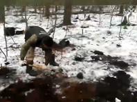 """ВРязанской области найдены останки, которые могут принадлежать Екатерине Левченко. В ее убийстве подозревают фигурантов дела """"Сети""""*"""