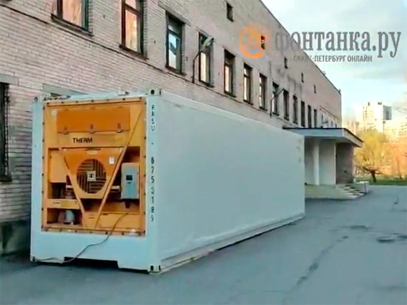 В Петербурге у больниц появились контейнеры-рефрижераторы для тел умерших от коронавируса
