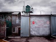 Член СПЧ Андрей Бабушкин предложил освободить тех заключенных (за исключением злостных нарушителей режима), для кого подошли сроки УДО или изменения наказания на более мягкое, но с соблюдением всех медицинских проверок и других формальностей