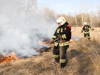 Самоизоляция на дачах приблизила пик лесных пожаров в России: огонь уже пришел в ряд регионов раньше времени