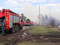 В регионе сохраняется четвертый уровень пожароопасности, действует особый противопожарный режим. Несмотря на минерализованную полосу из-за ветра огонь распространяется даже на молодые посадки сосны