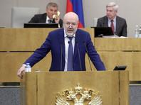 В Госдуме подтвердили, что не планируют объявлять амнистию к 75-летию Победы