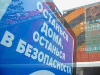 Инициатива о возможности введения на территории России карантинных режимов содержится в предложениях комитета по конституционному законодательству Совета Федерации РФ