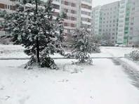 На северо-запад России обрушился майский снегопад (ВИДЕО, ФОТО)