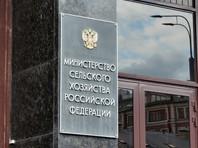 Министерство сельского хозяйства России уже призвало руководителей региональных органов агропромышленного комплекса страны контролировать ситуацию с саранчой