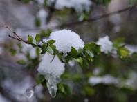 Синоптики прогнозируют снегопад в Москве 21 мая