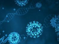 В геноме нового коронавируса найден фрагмент белка человека: вирус-захватчик мутировал