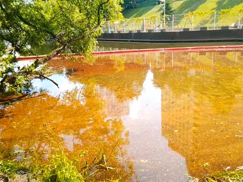 Разлив нефтепродуктов в Химках