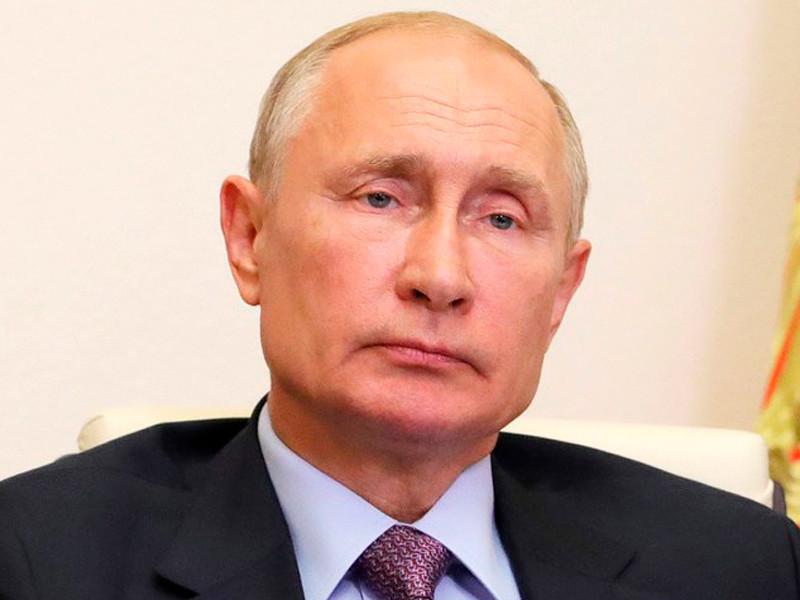 Владимир Путин в режиме видеоконференции провел встречу с членами Общественной палаты