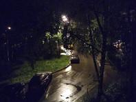 """МЧС предупредило москвичей  об """"очень сильном"""" дожде и порывистом ветре до 17 м/с"""