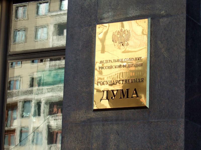 Госдума РФ  в первом чтении приняла законопроект о внедрении единой электронной визы
