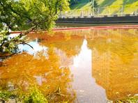 Загрязнение в Химкинском водохранилище в тысячу раз превысило норму из-за нефтеразлива