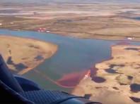 Согласно исследованиям краевого Минэкологии, через неделю после аварии на ТЭЦ в Норильске, в ручье Безымянный, ближайшем к месту инцидента, зафиксирована концентрация нефтепродуктов до 1100 ПДК