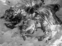 Как сообщил сегодня Андрей Курьяков, вопрос о причинах гибели туристов на перевале Дятлова теперь закрыт, следствие пришло к заключению, что причиной тому стали снежная лавина и плохая видимость