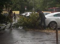 Гроза, ливни, ураган - накануне ветер в Москве повалил 130 деревьев, повредил 23 машины, опрокинул щиты и торговые палатки (ВИДЕО)