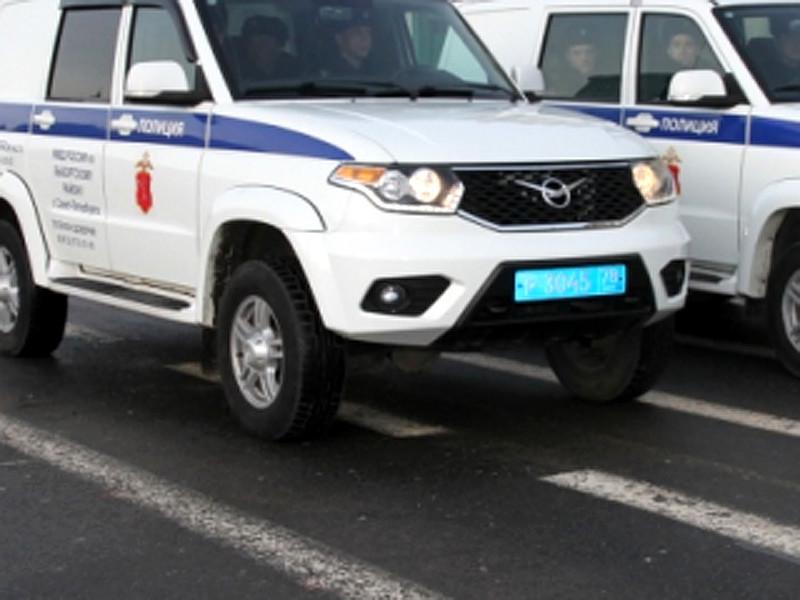 В Санкт-Петербурге Смольнинский районный суд назначил пять суток административного ареста 22-летнему безработному за хулиганскую выходку с полицейским автомобилем